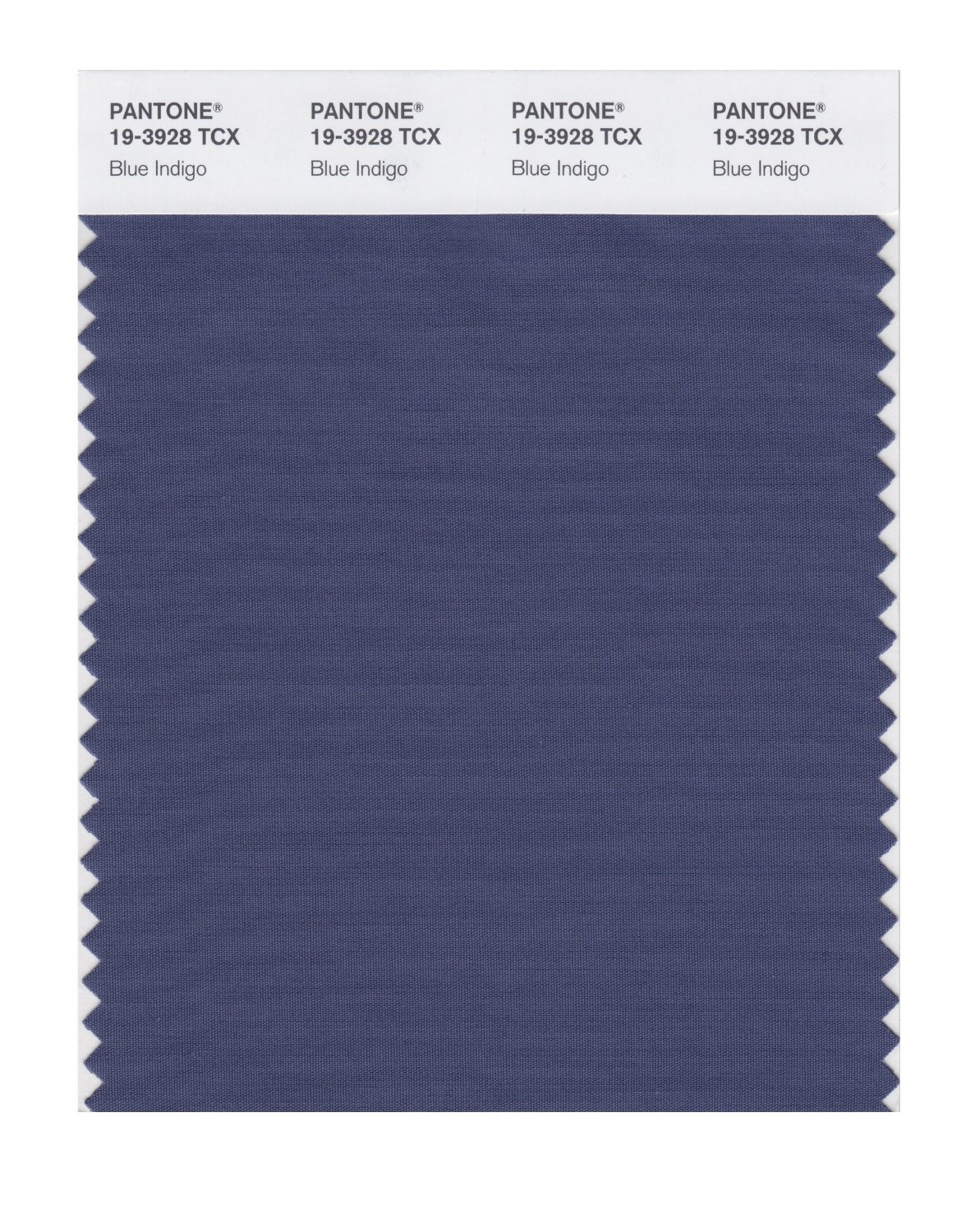 Pantone Smart Swatch 19-3928 Blue Indigo