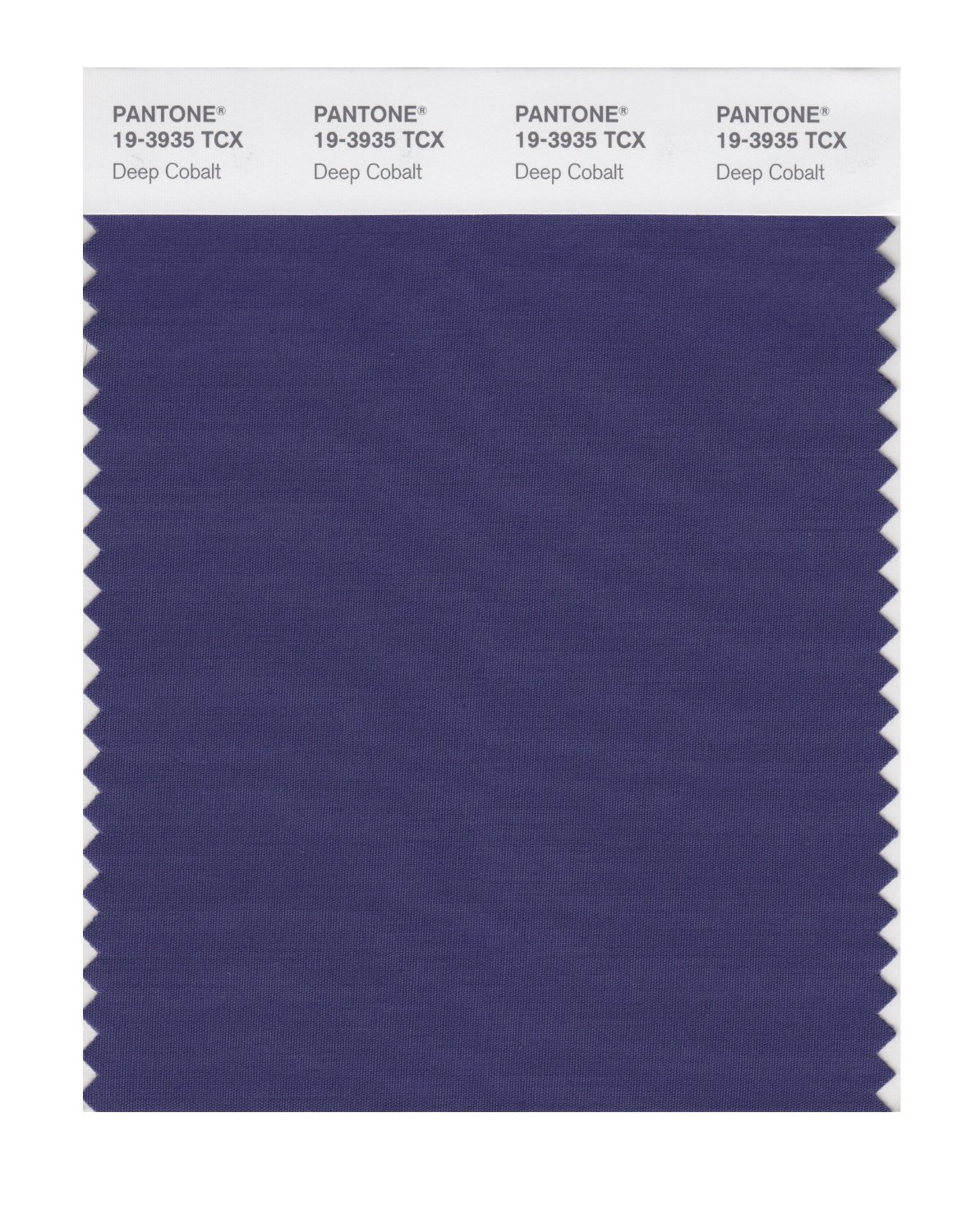 Pantone Smart Swatch 19-3935 Deep Cobalt