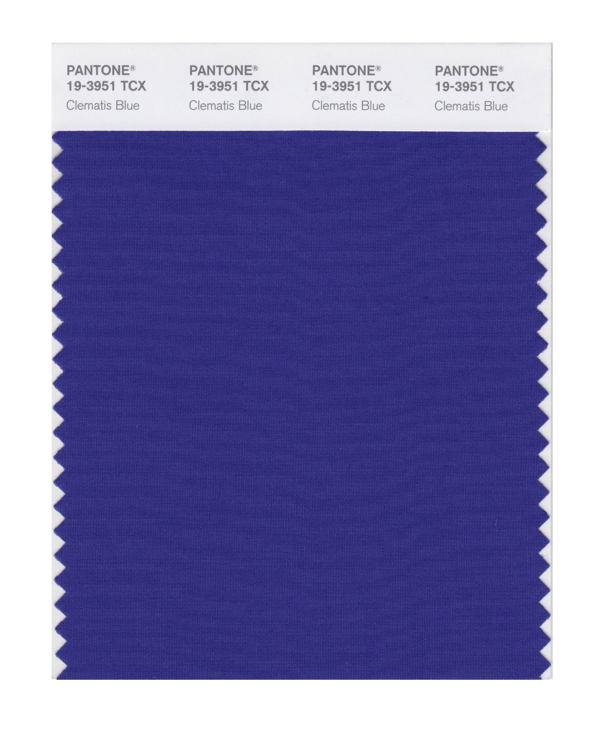 Pantone Smart Swatch 19-3951 Clematis Blue