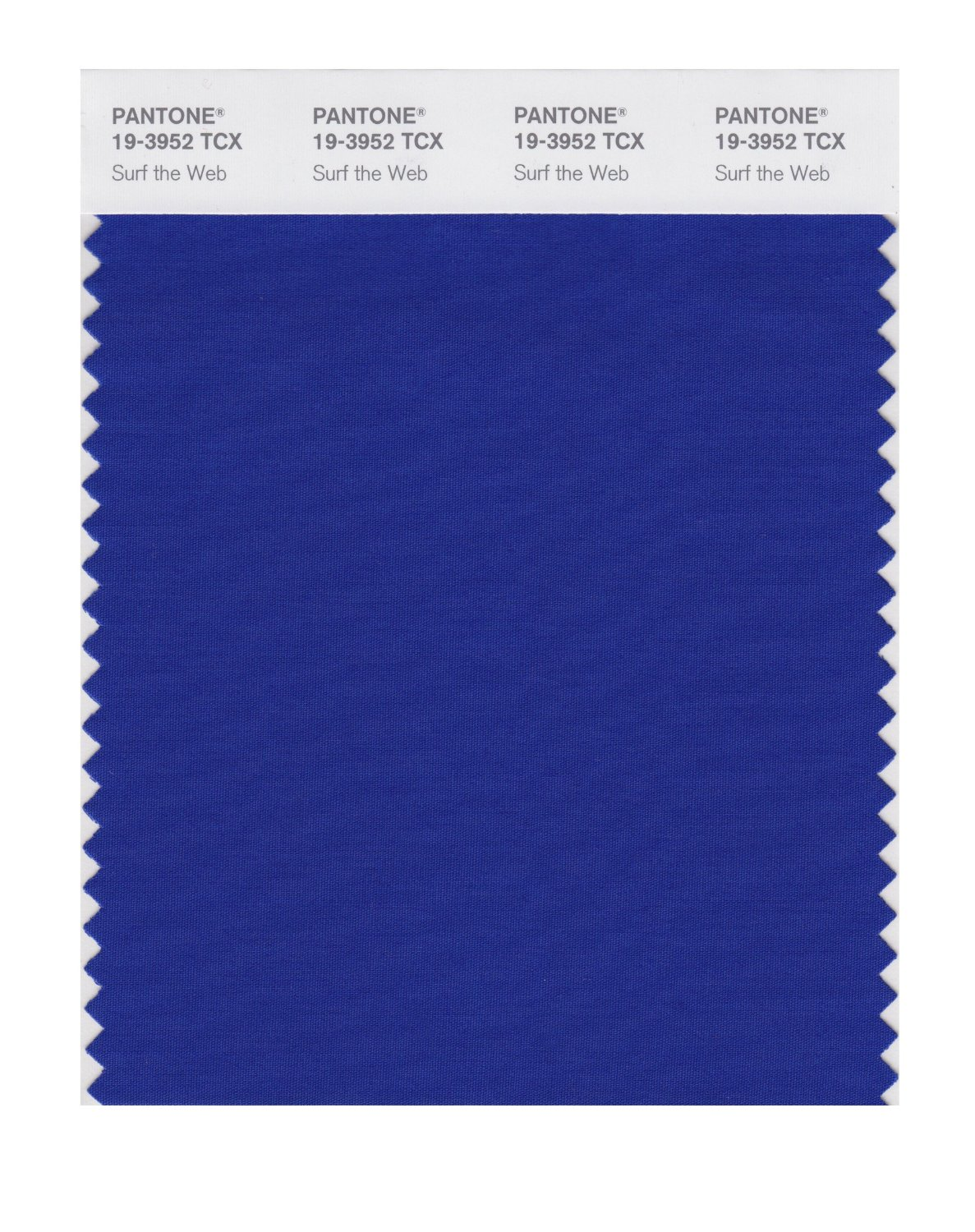 Pantone Smart Swatch 19-3952 Surf The Web