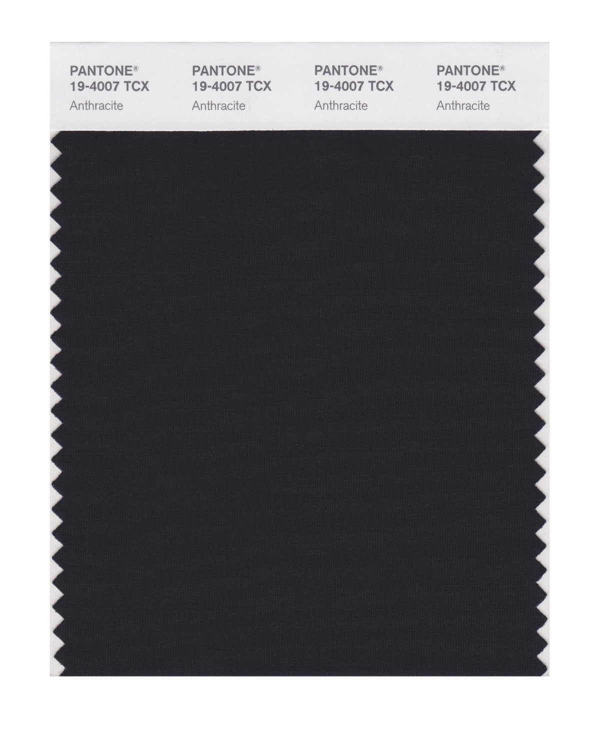 Pantone Smart Swatch 19-4007 Anthracite