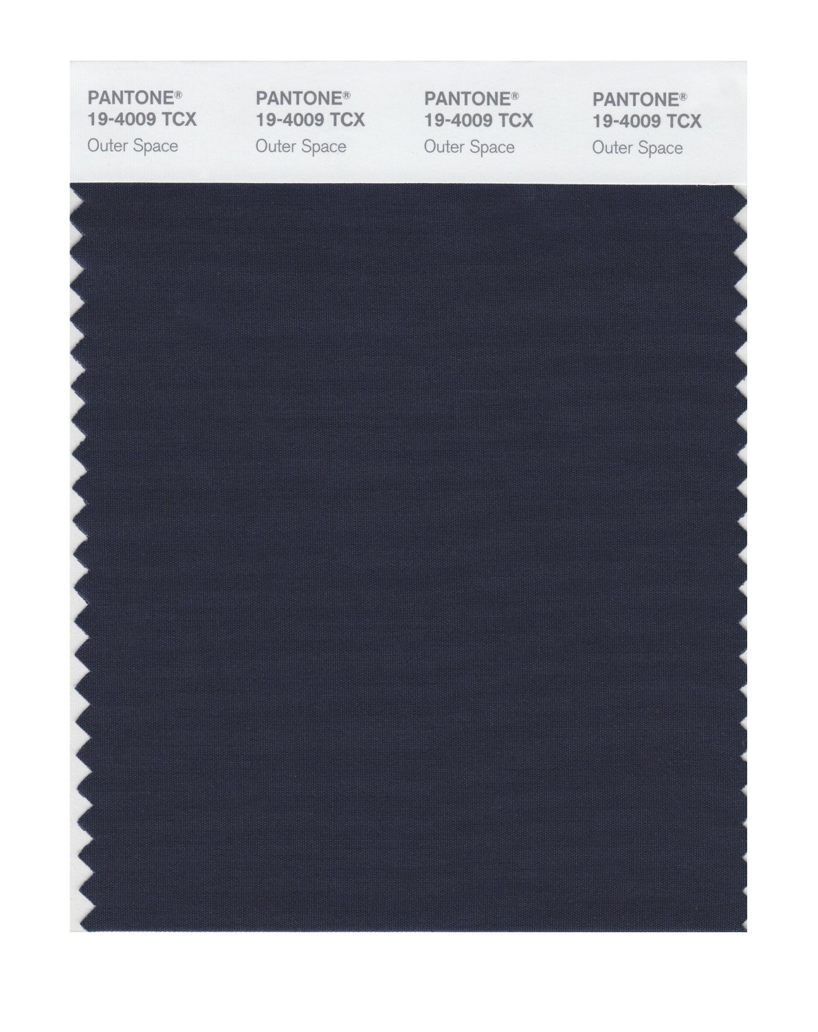 Pantone Smart Swatch 19-4009 Outer Space
