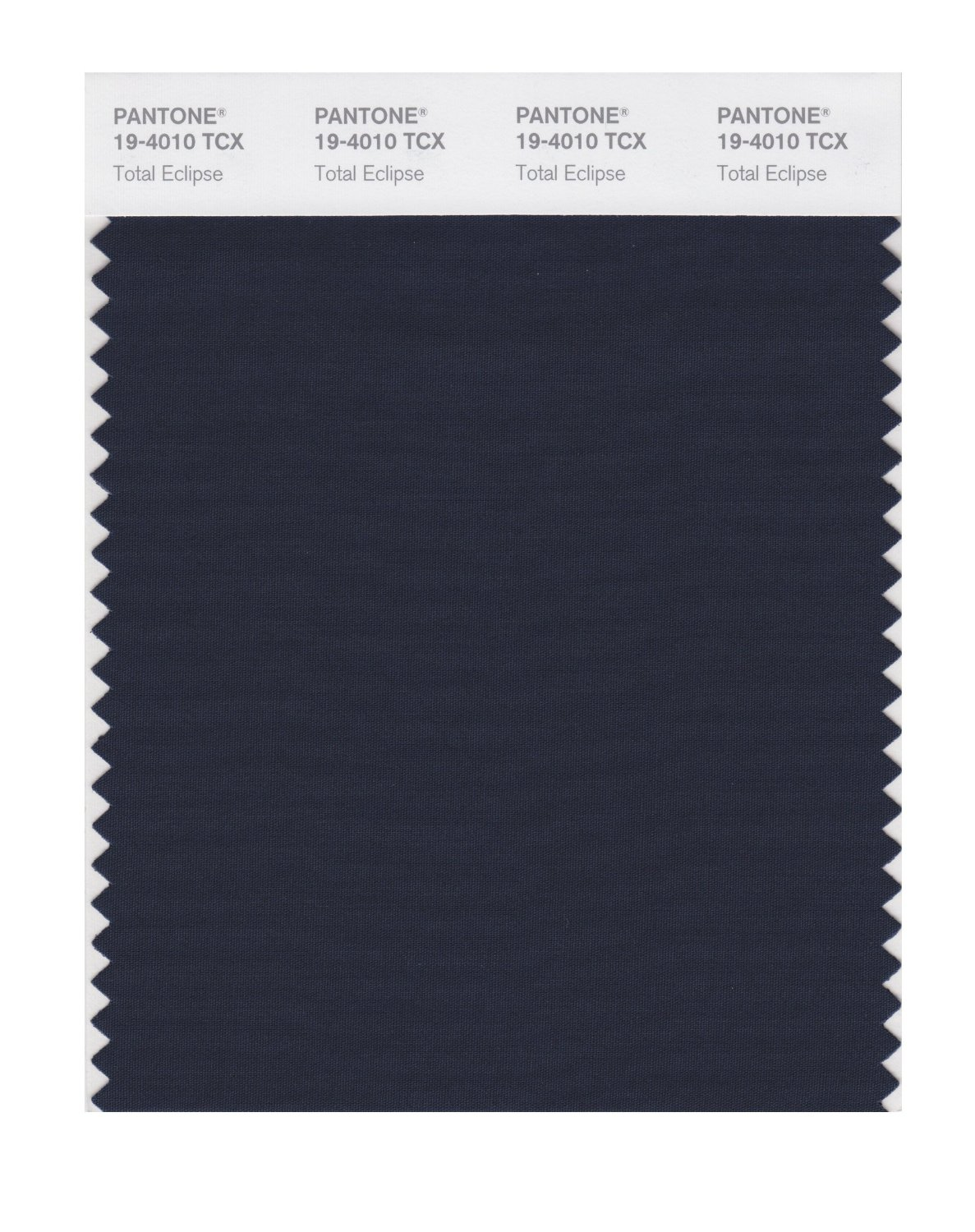 Pantone Smart Swatch 19-4010 Total Eclipse