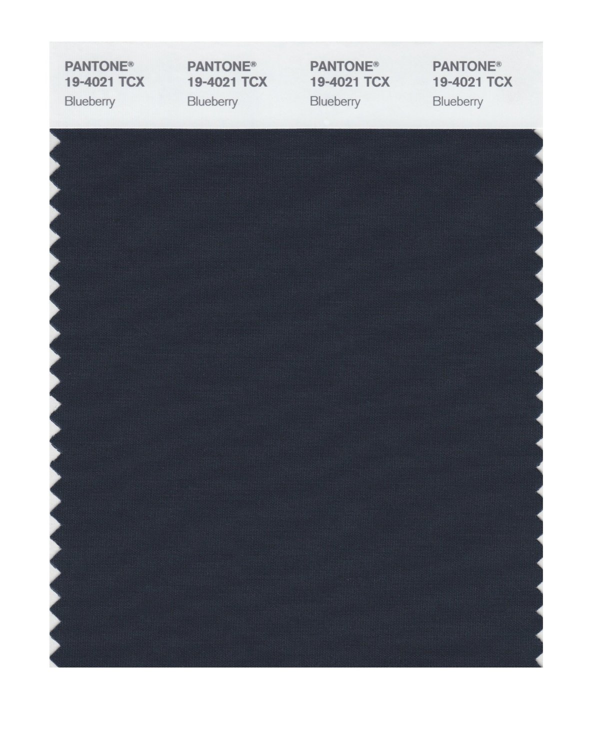 Pantone Smart Swatch 19-4021 Blueberry
