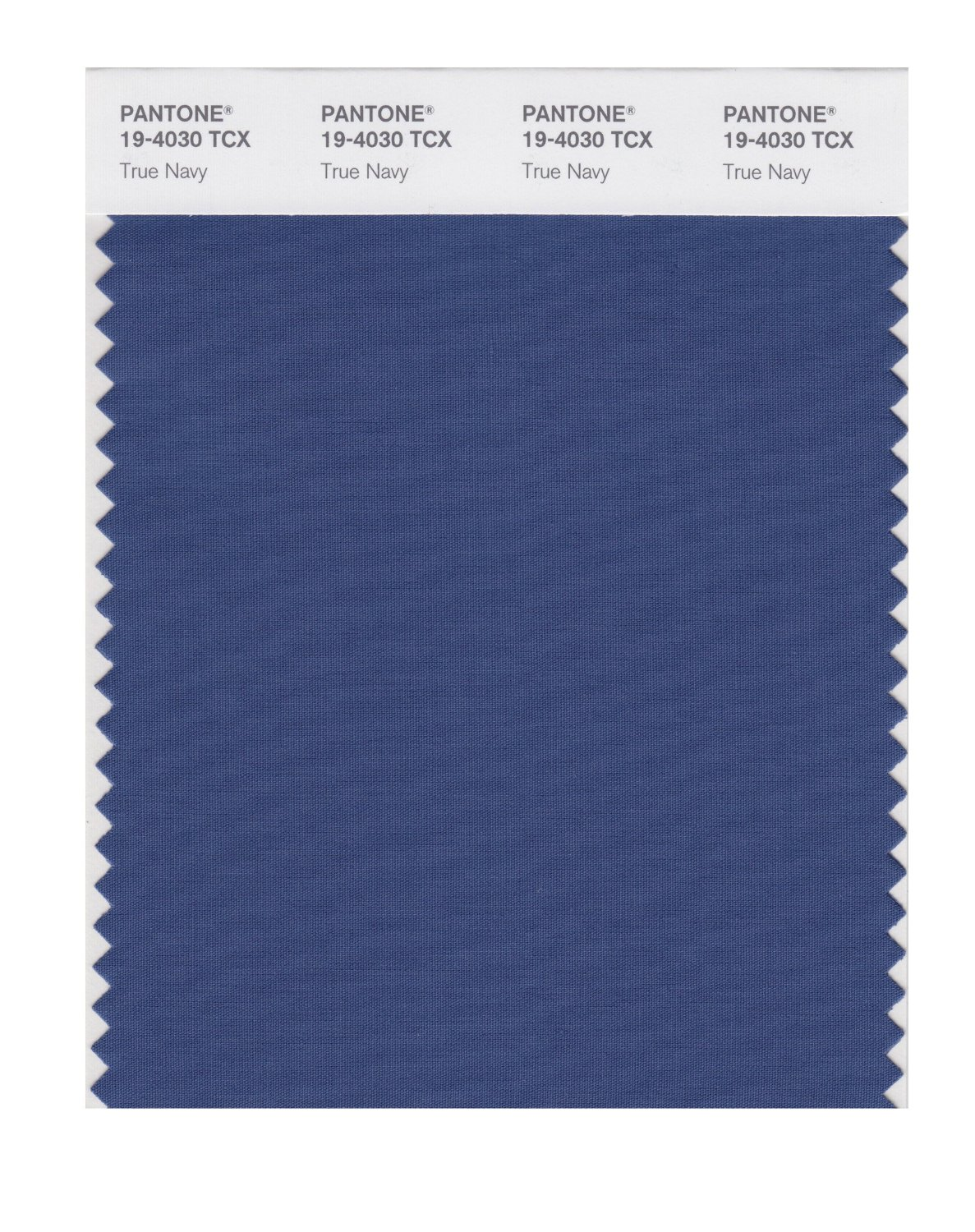 Pantone Smart Swatch 19-4030 True Navy