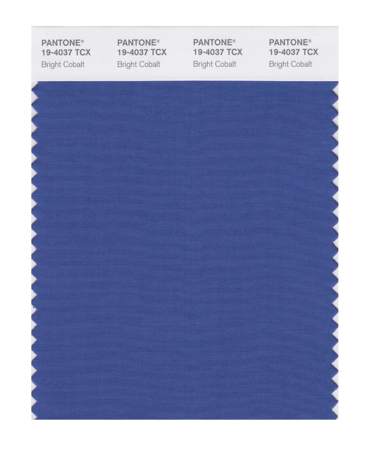 Pantone Smart Swatch 19-4037 Bright Cobalt