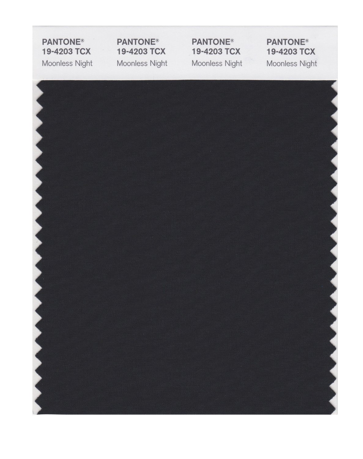 Pantone Smart Swatch 19-4203 Moonless Night
