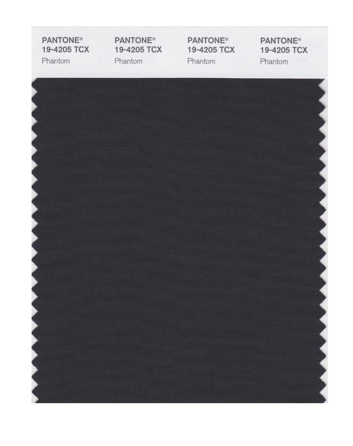 Pantone Smart Swatch 19-4205 Phantom