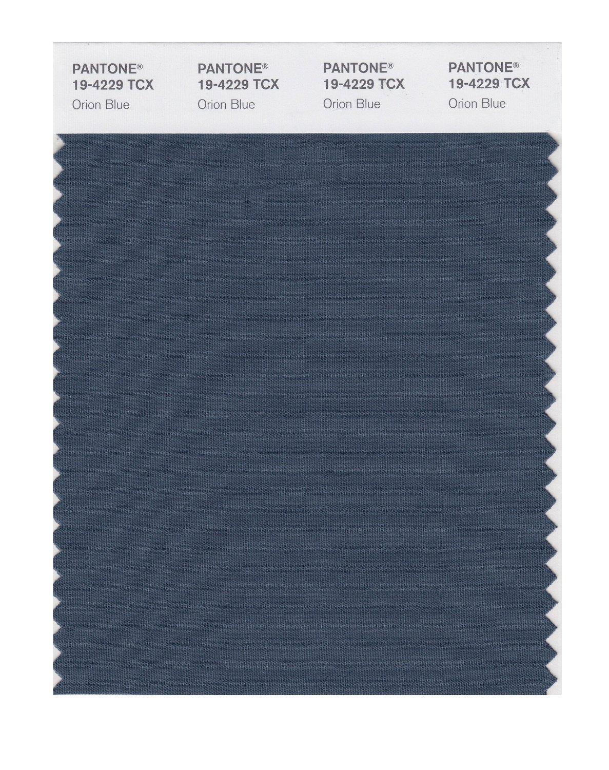 Pantone Smart Swatch 19-4229 Orion Blue
