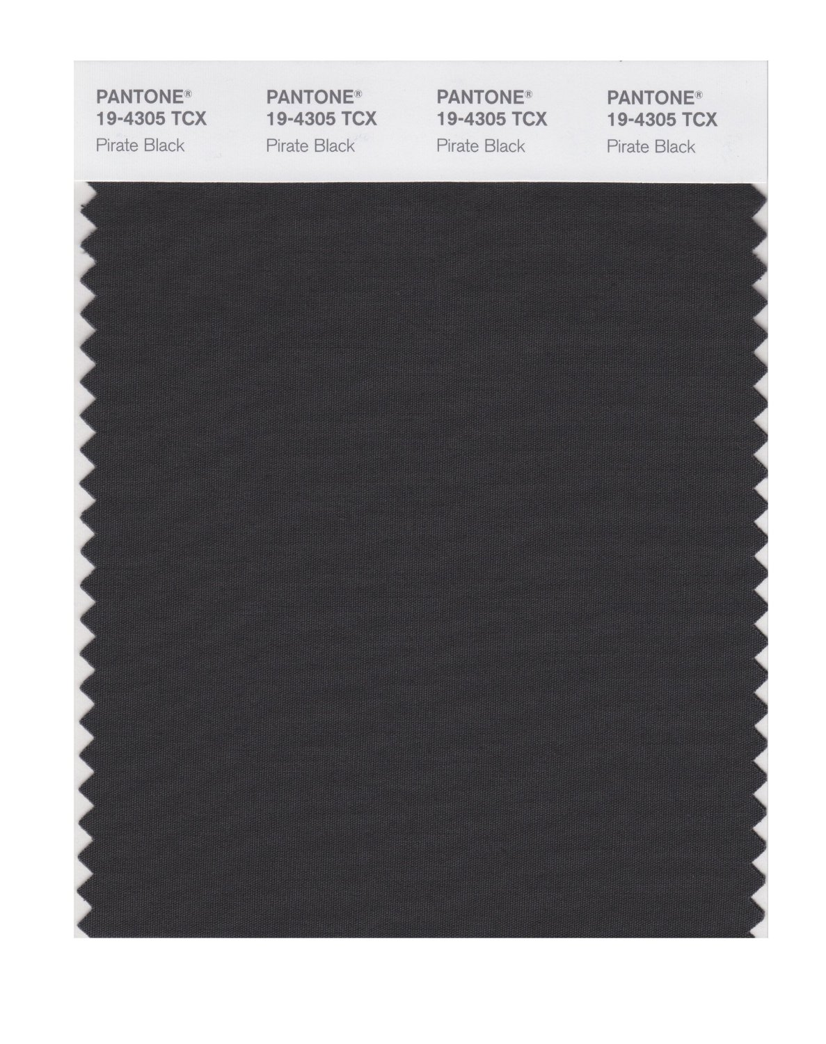 Pantone Smart Swatch 19-4305 Pirate Black