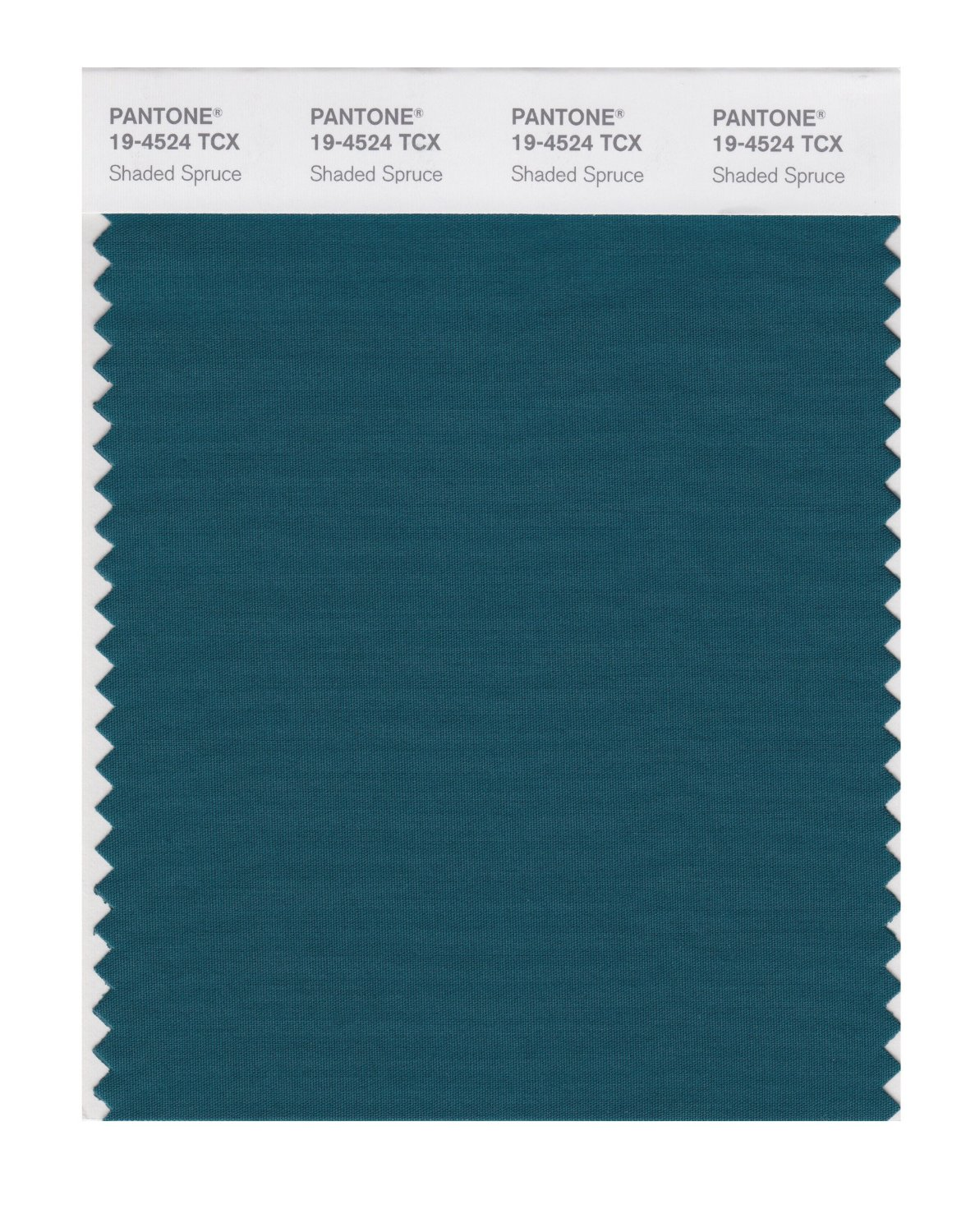 Pantone Smart Swatch 19-4524 Shaded Spruce