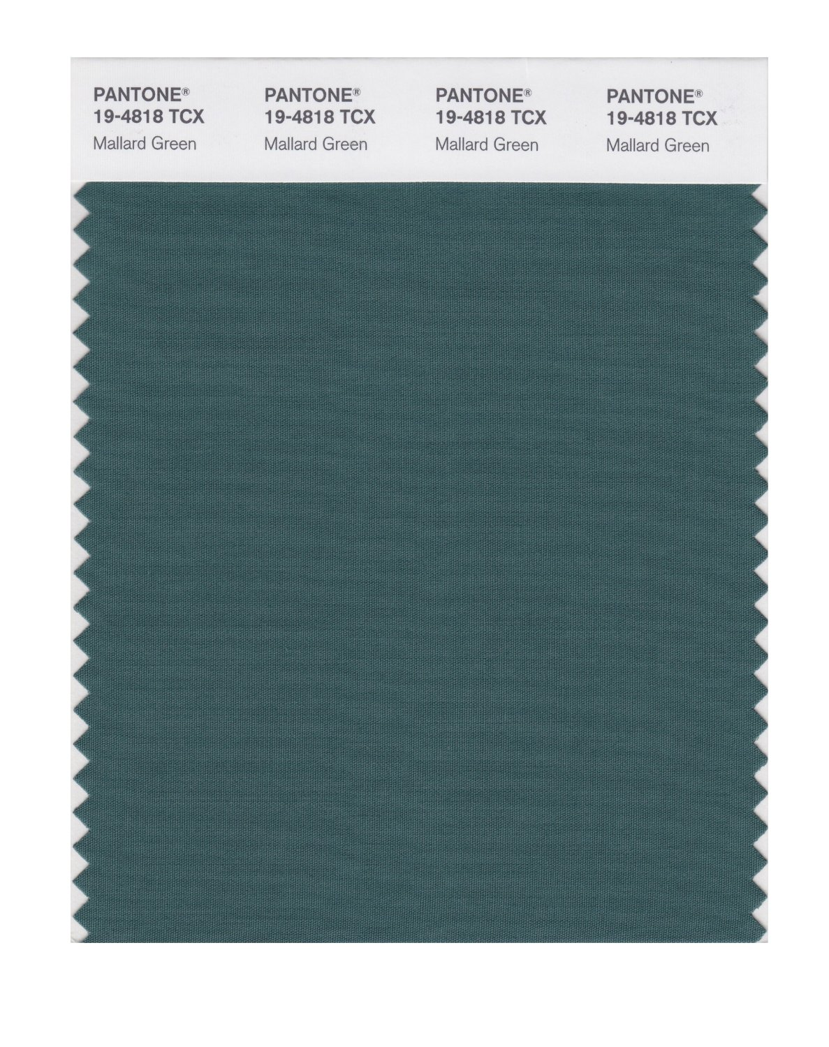 Image gallery mallard green for Where to buy pantone paint
