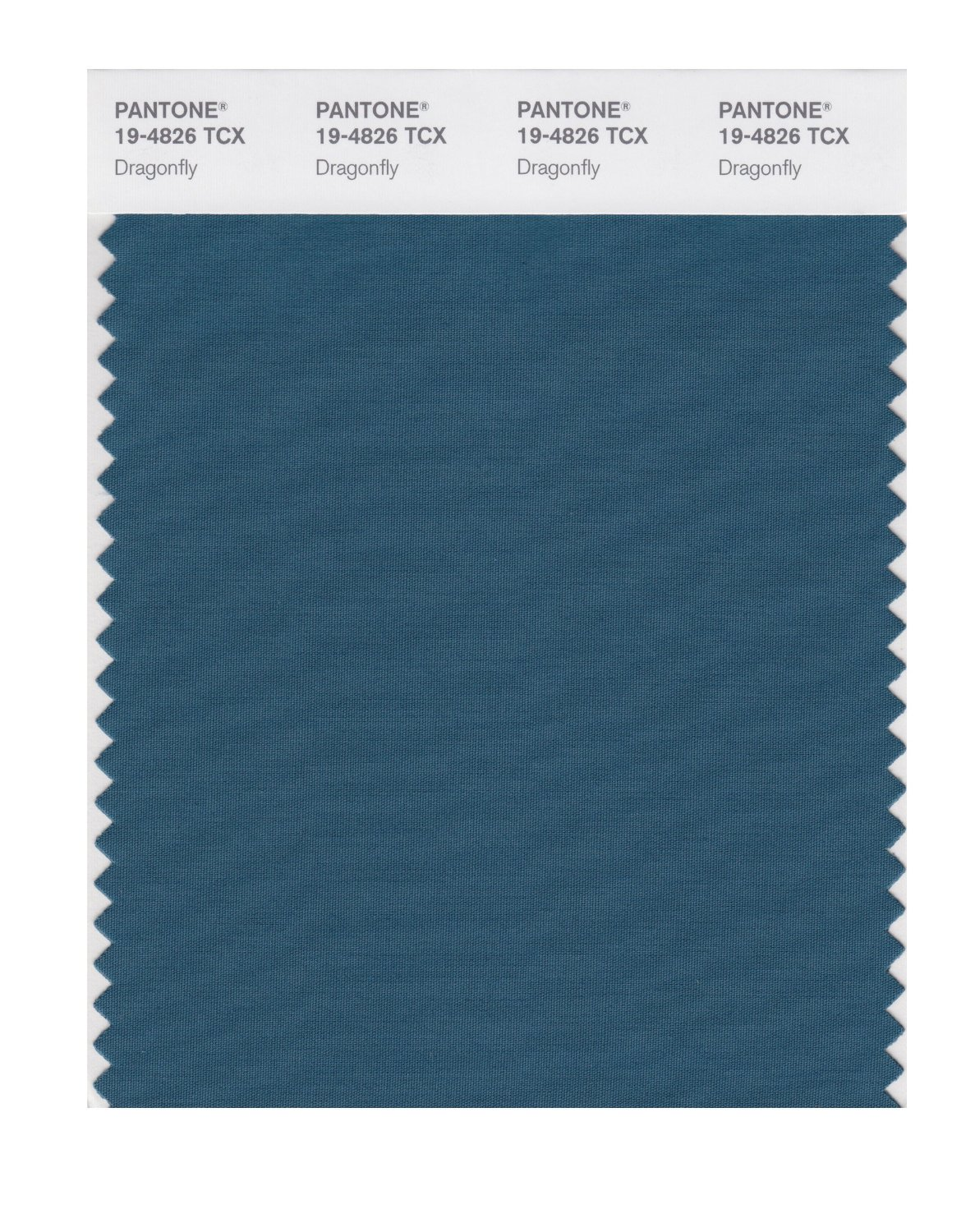 Pantone Smart Swatch 19-4826 Dragonfly