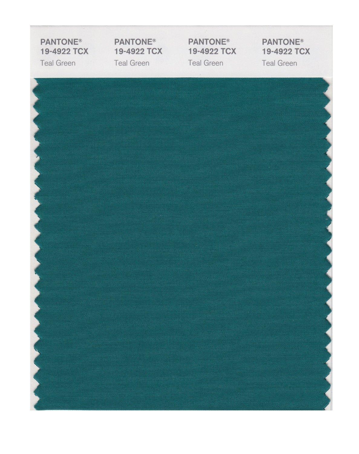 Pantone Smart Swatch 19-4922 Teal Green