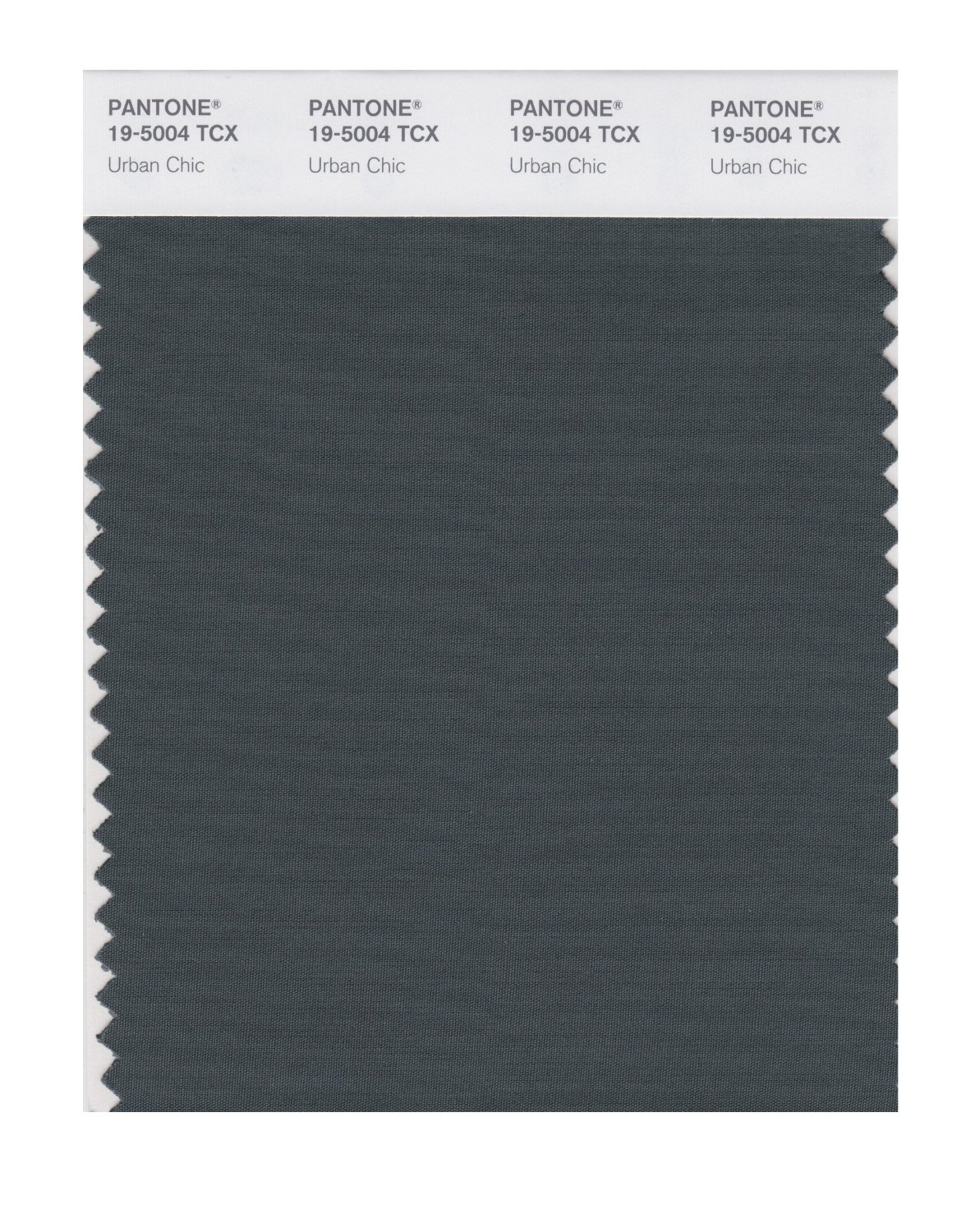 Pantone Smart Swatch 19-5004 Urban Chic