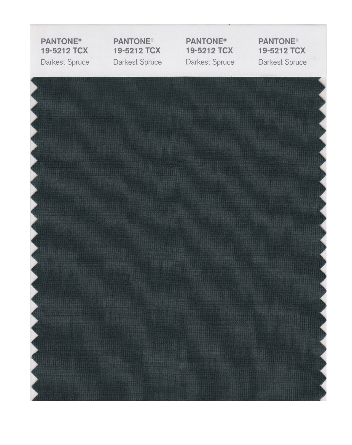 Pantone Smart Swatch 19-5212 Darkest Spruce