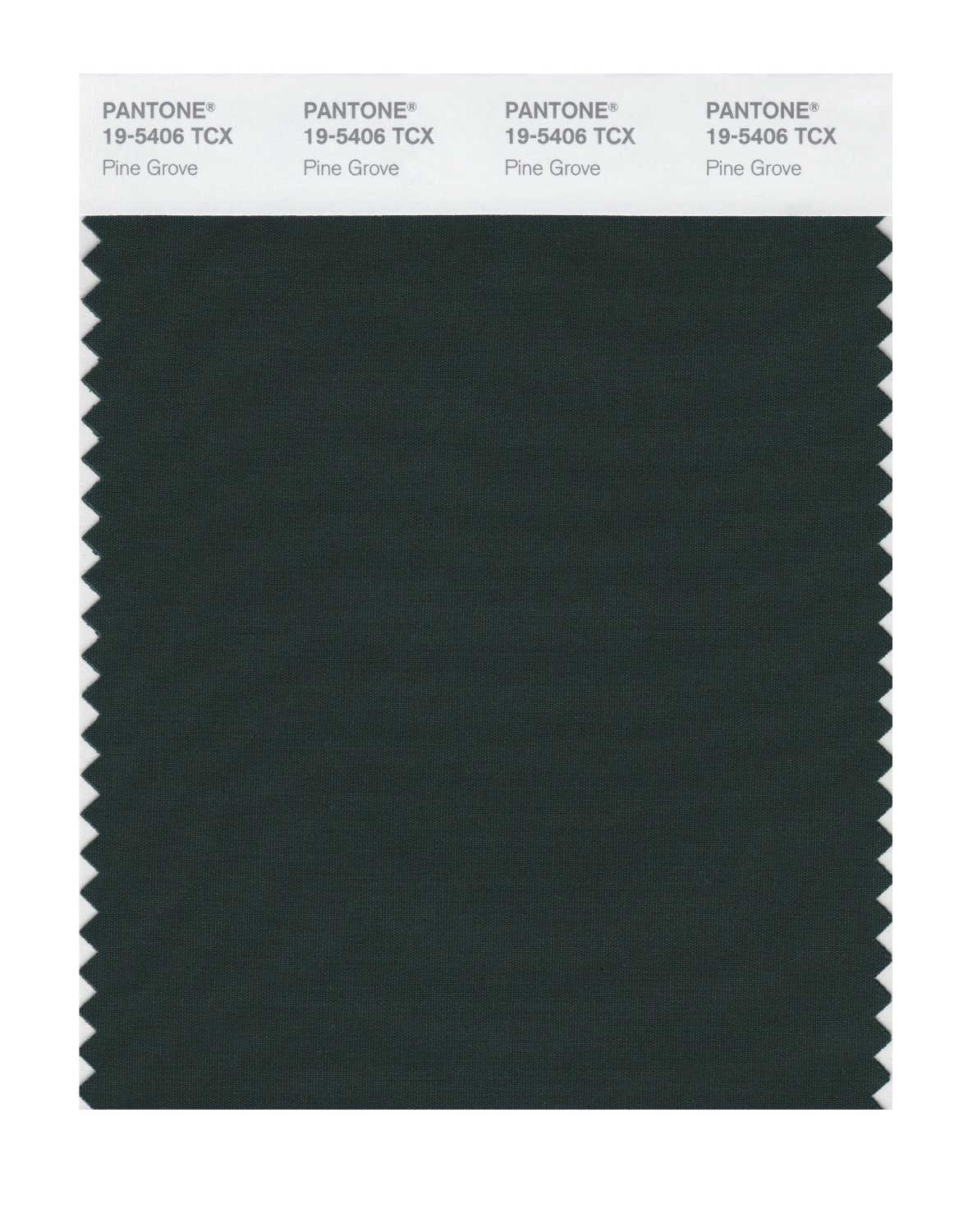 Buy pantone smart swatch 19 5406 pine grove for Where to buy pantone paint