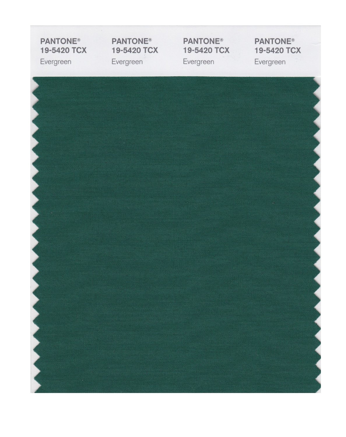 Pantone Smart Swatch 19-5420 Evergreen