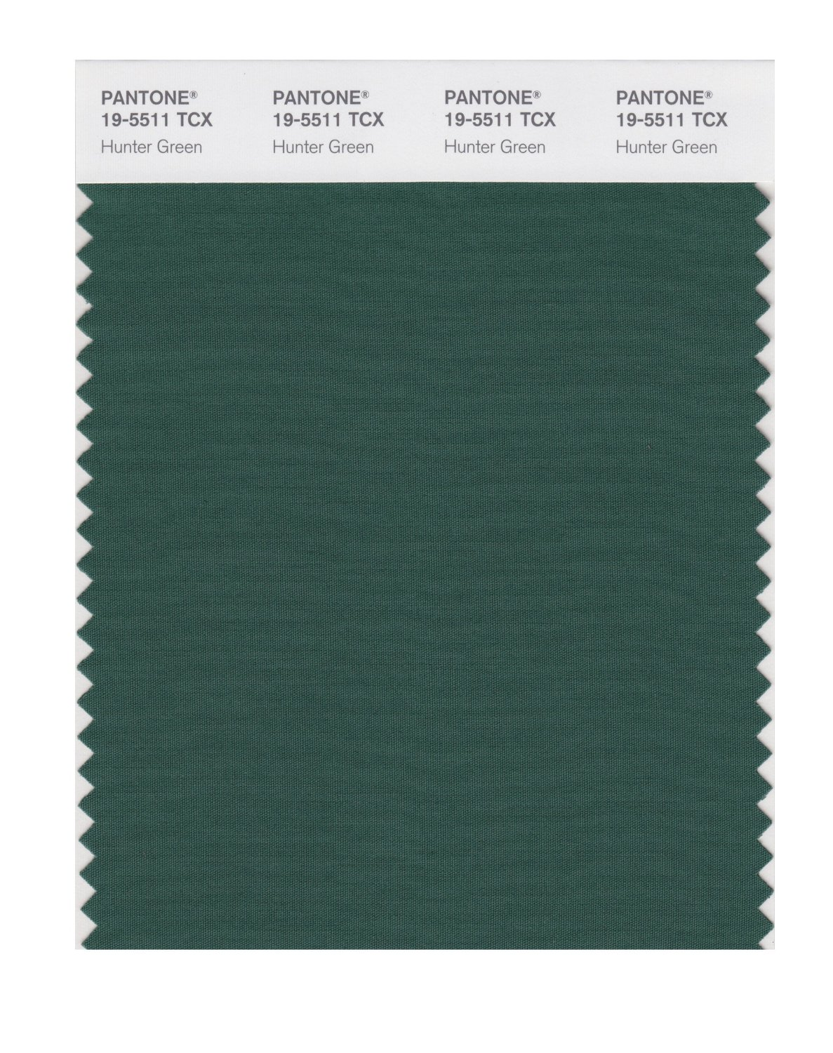 Pantone Smart Swatch 19-5511 Hunter Green