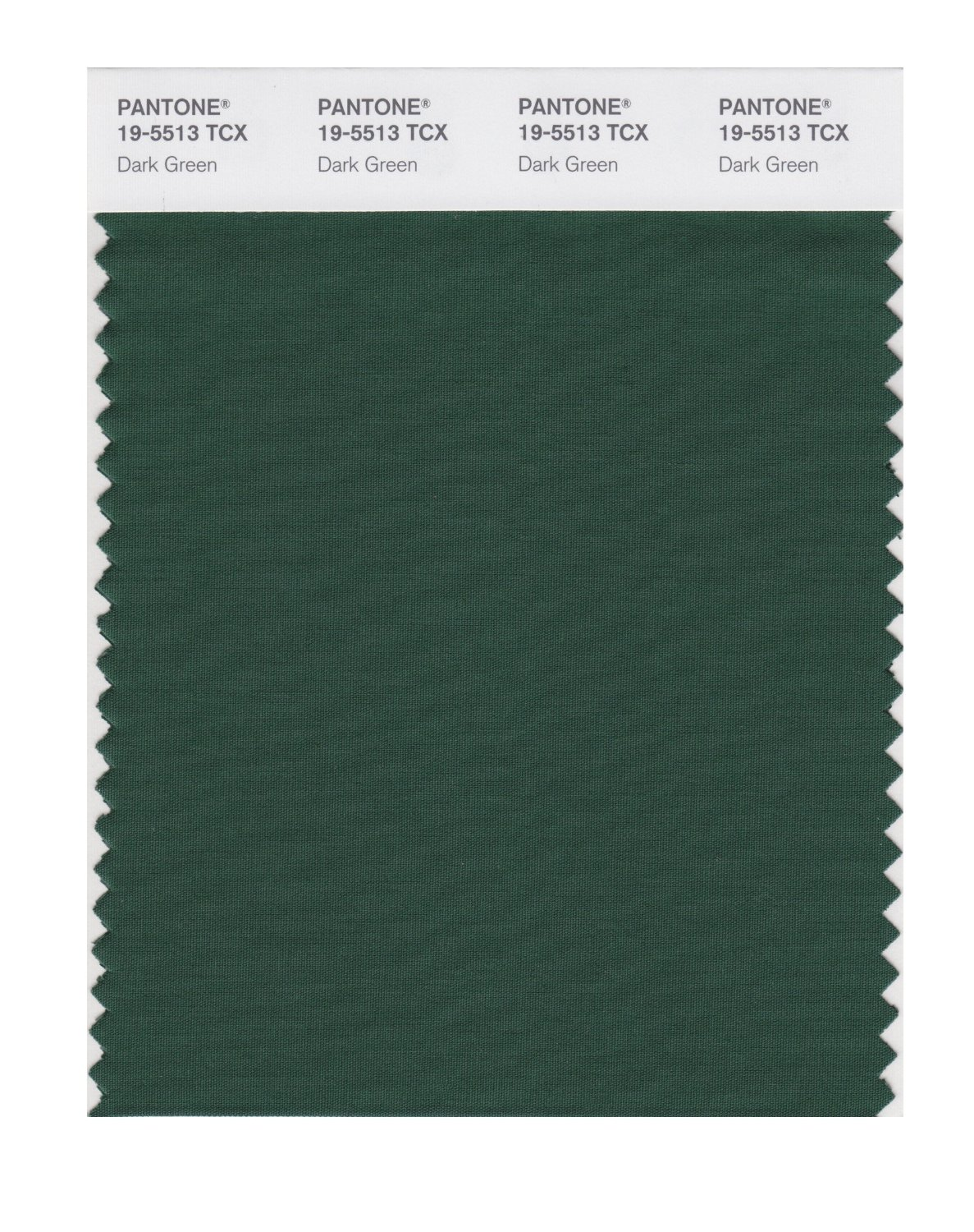 Pantone Smart Swatch 19-5513 Dark Green