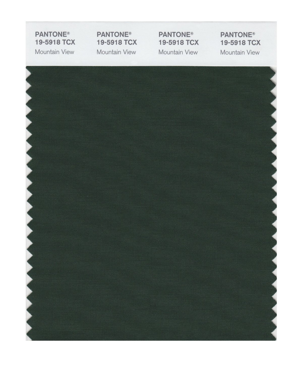 Pantone Smart Swatch 19-5918 Mountain View