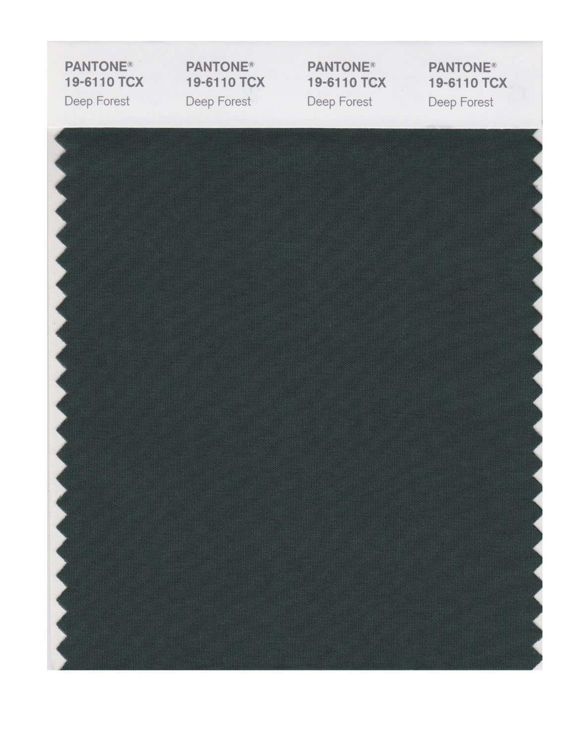 Pantone Smart Swatch 19-6110 Deep Forest