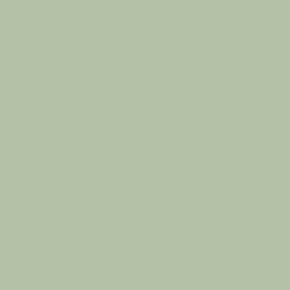 Pantone Tpg Sheet 14 0114 Celadon Green