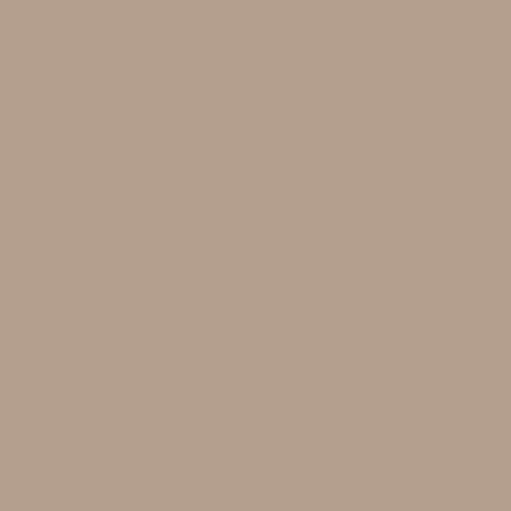 Pantone TPG Sheet 14 1012 Gilded Beige