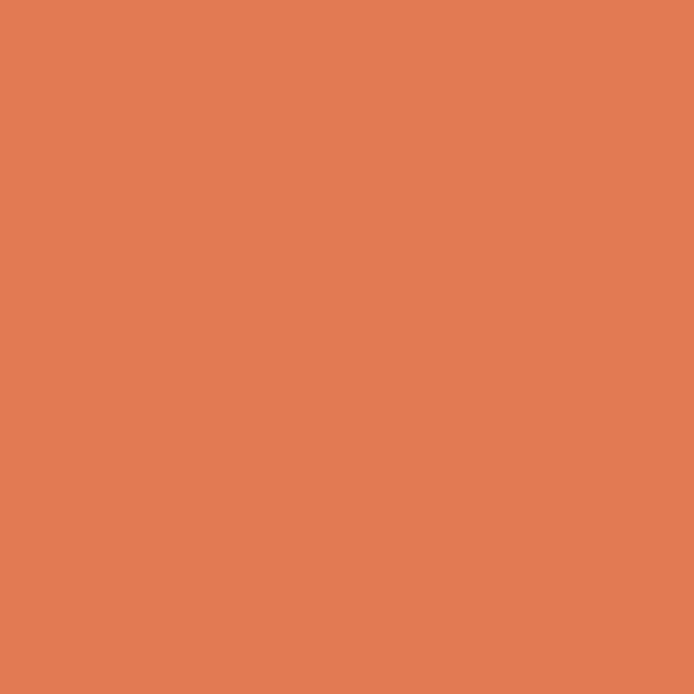 Pantone TPG Sheet 16-1344 Dusty Orange