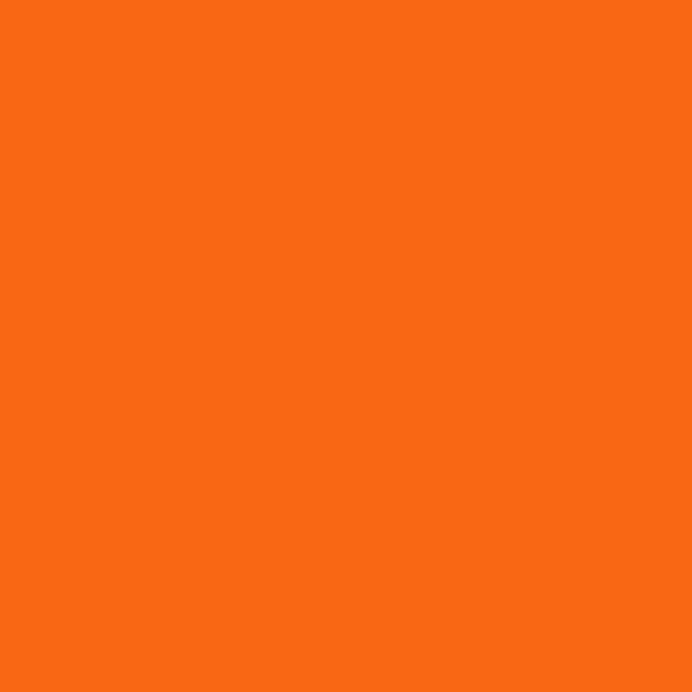 Pantone TPG Sheet 16-1358 Orange Tiger
