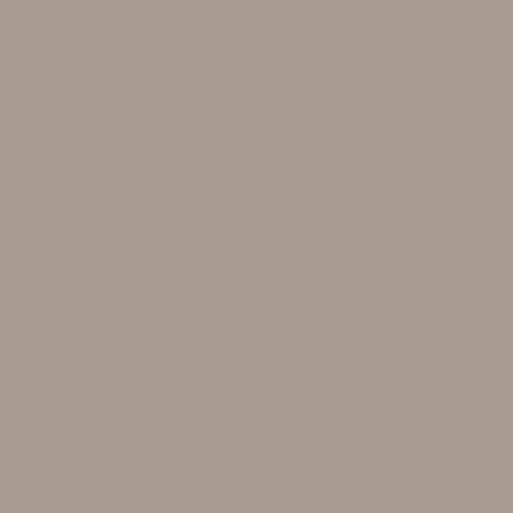 Pantone TPG Sheet 16-1407 Cobblestone