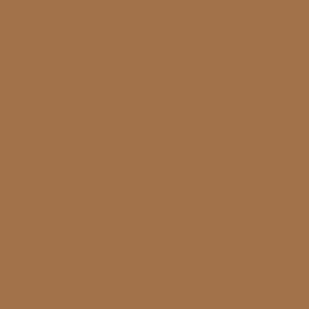 Pantone TPG Sheet 17-1134 Brown Sugar