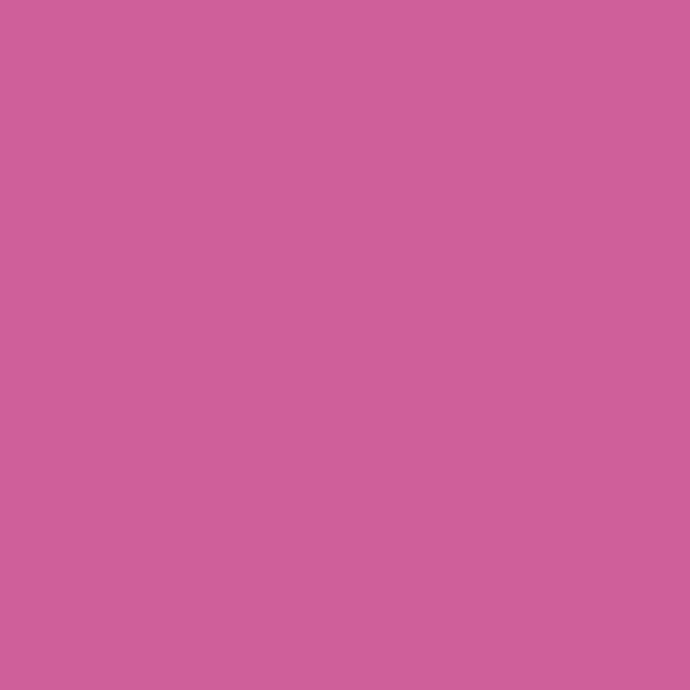 Pantone TPG Sheet 17-2627 Phlox Pink