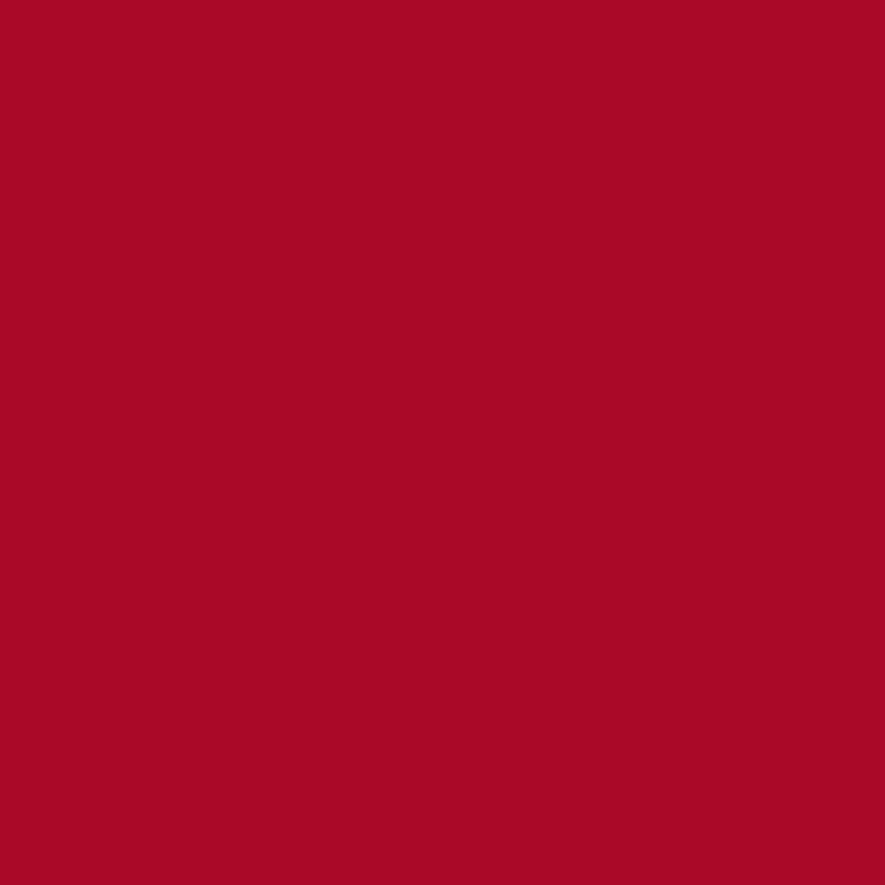 BUY Pantone TPG Sheet 19-1757 Barbados Cherry