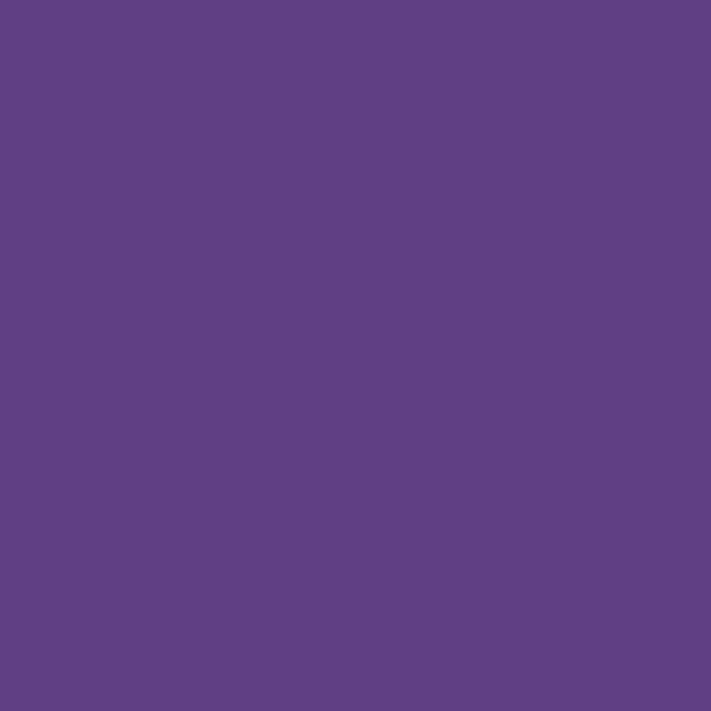 Pantone TPG Sheet 19 3642 Royal Purple