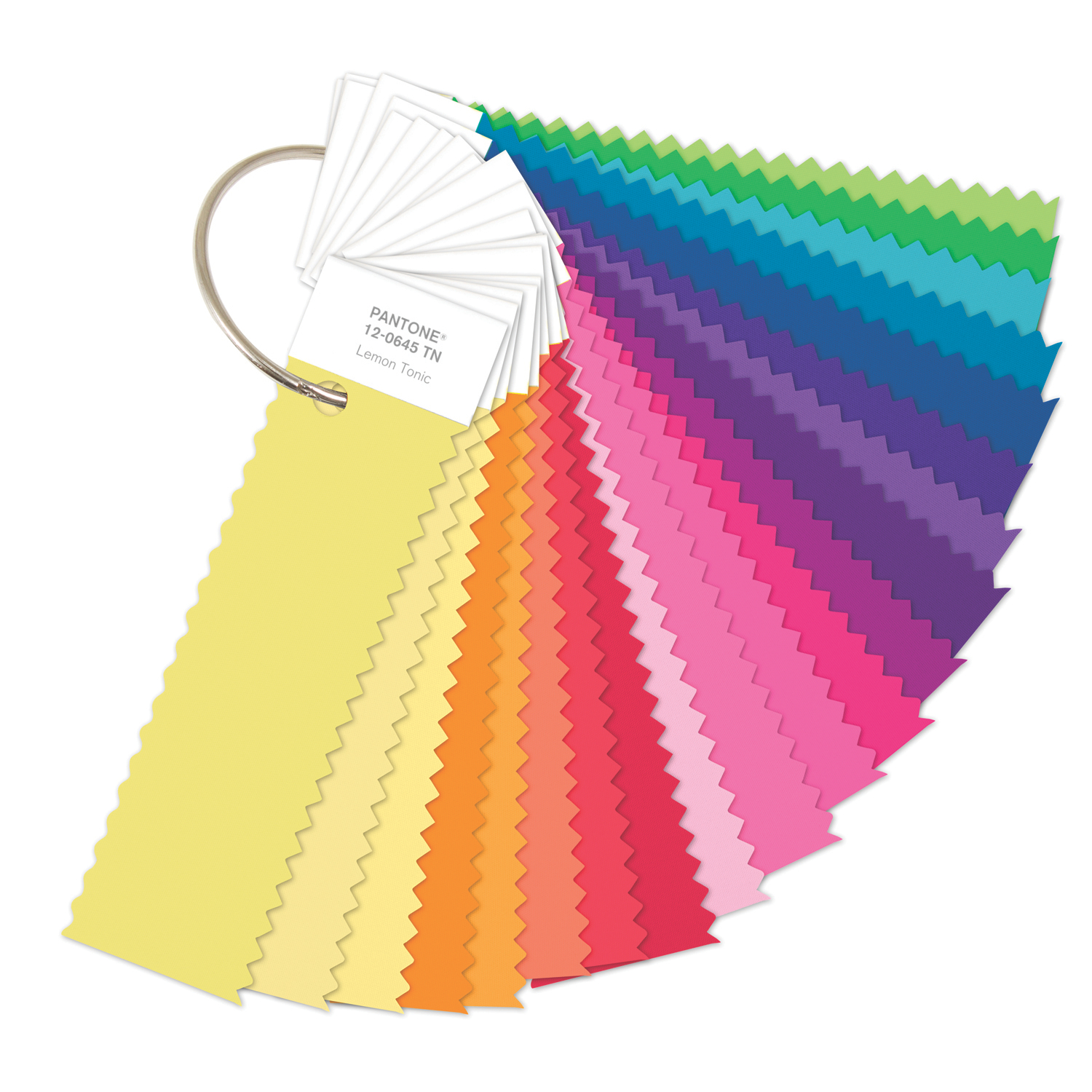 Pantone F+h Ffn100 Nylon Brights Ring Set