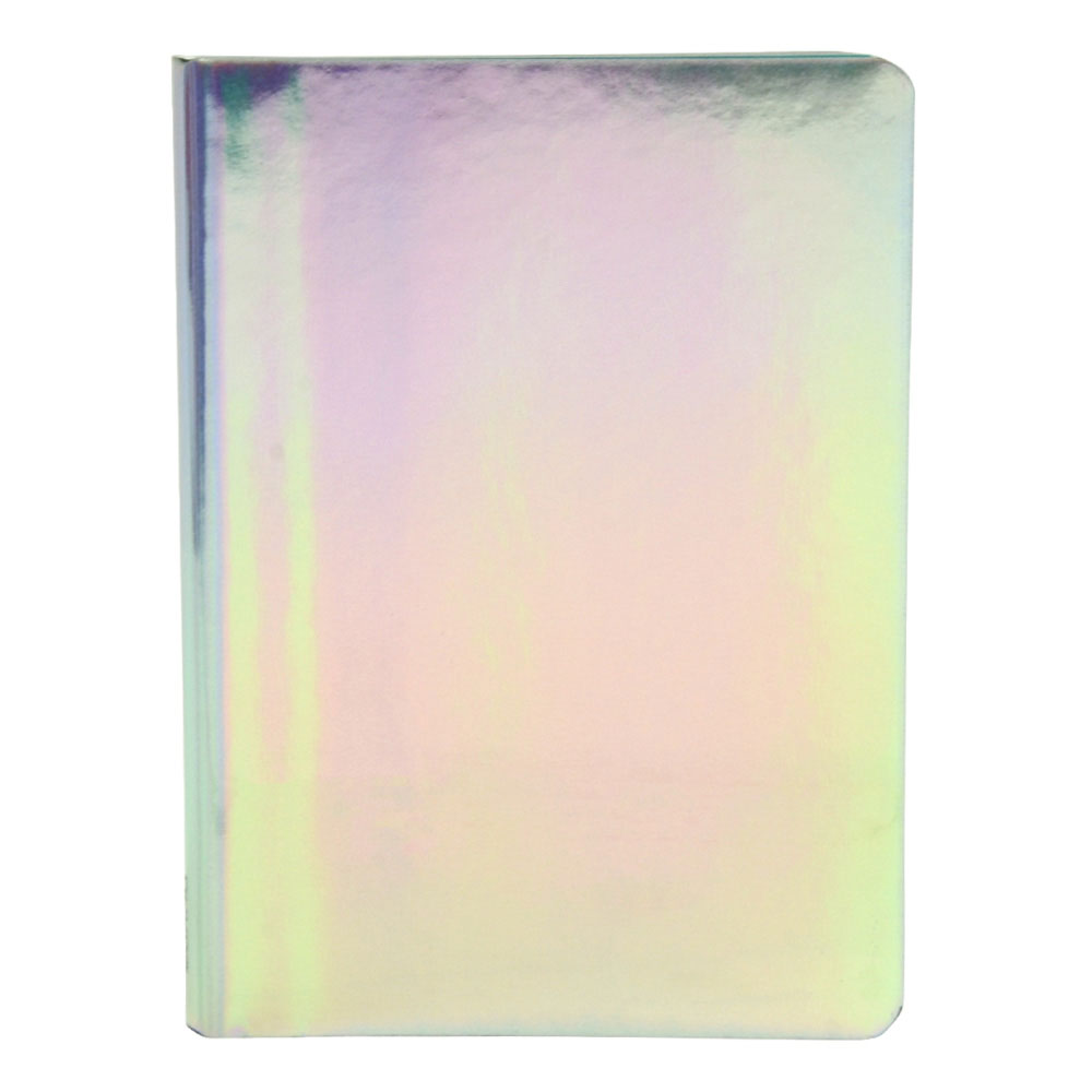 Nuuna Fluid Chrome Journal 6x4.25