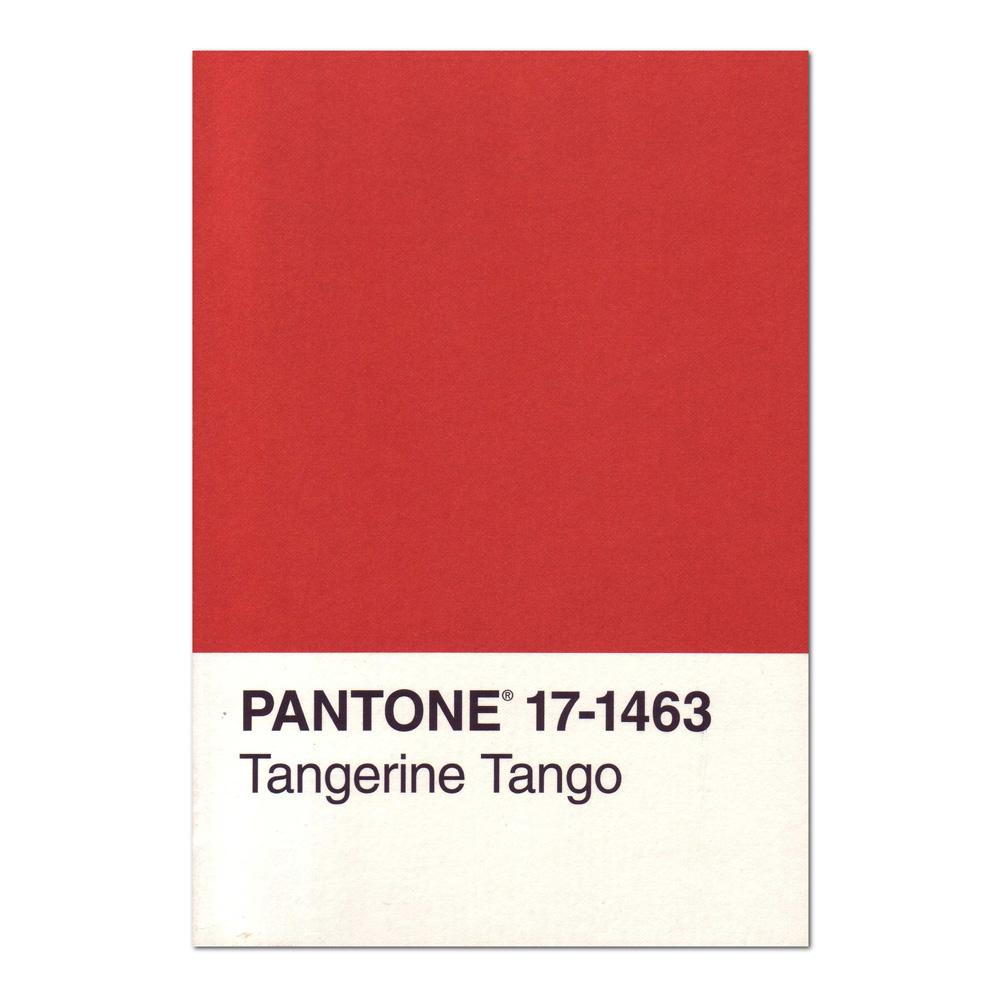 BUY Pantone Journal: Tangerine Tango