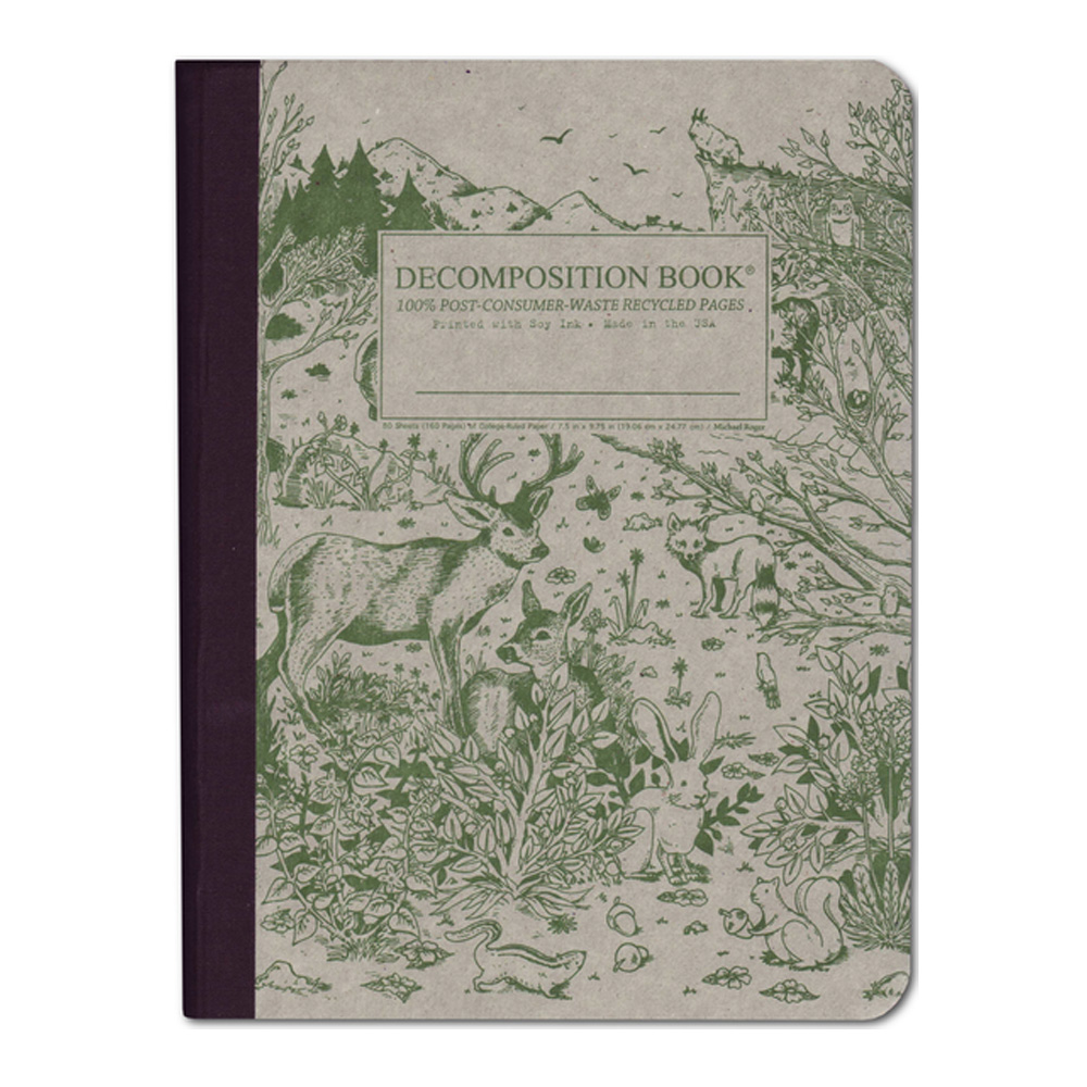 Pocket Decomposition Book: Dinosaurs