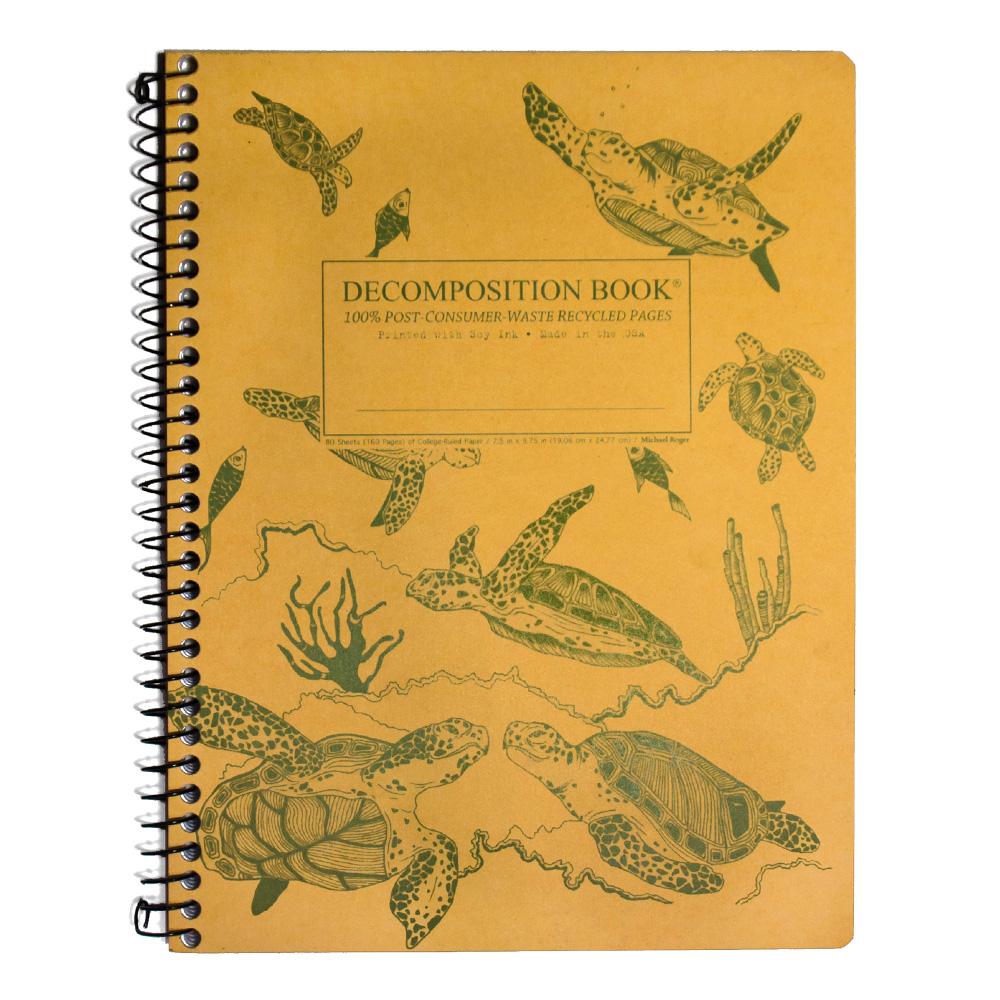 Decomposition Wire Book: Sea Turtles
