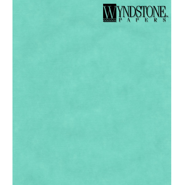 Wyn Colored Vellum Turquoise 19X25