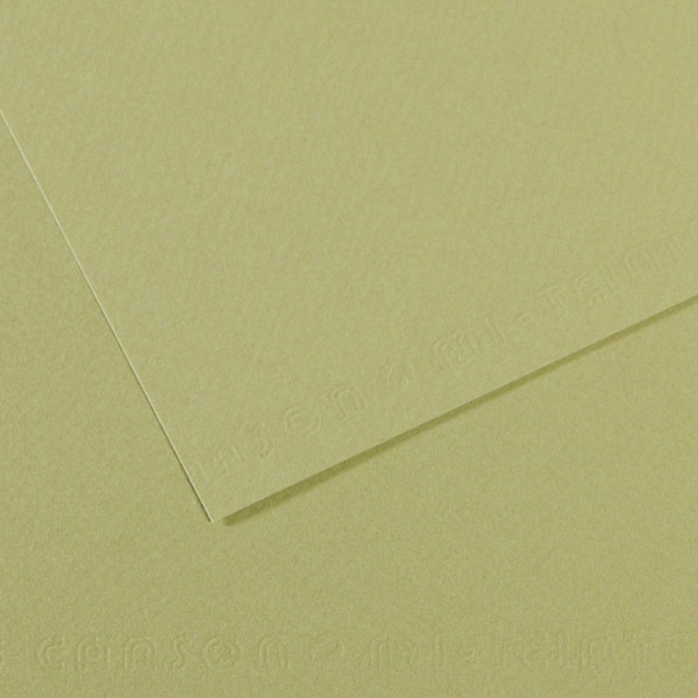 Mi-Teintes Paper 19.5X25.5 480 Light Green