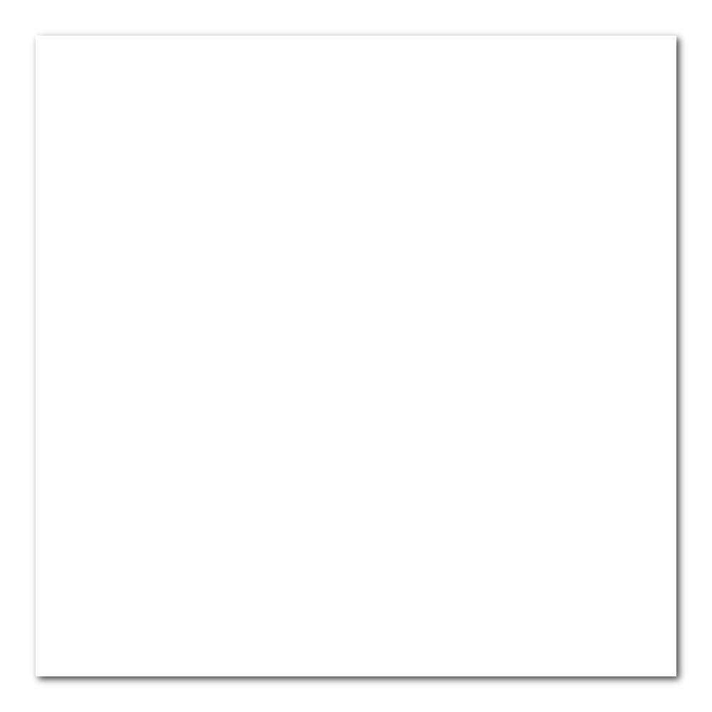 Canson Art Board 16X20 Mi-Teintes 335 White