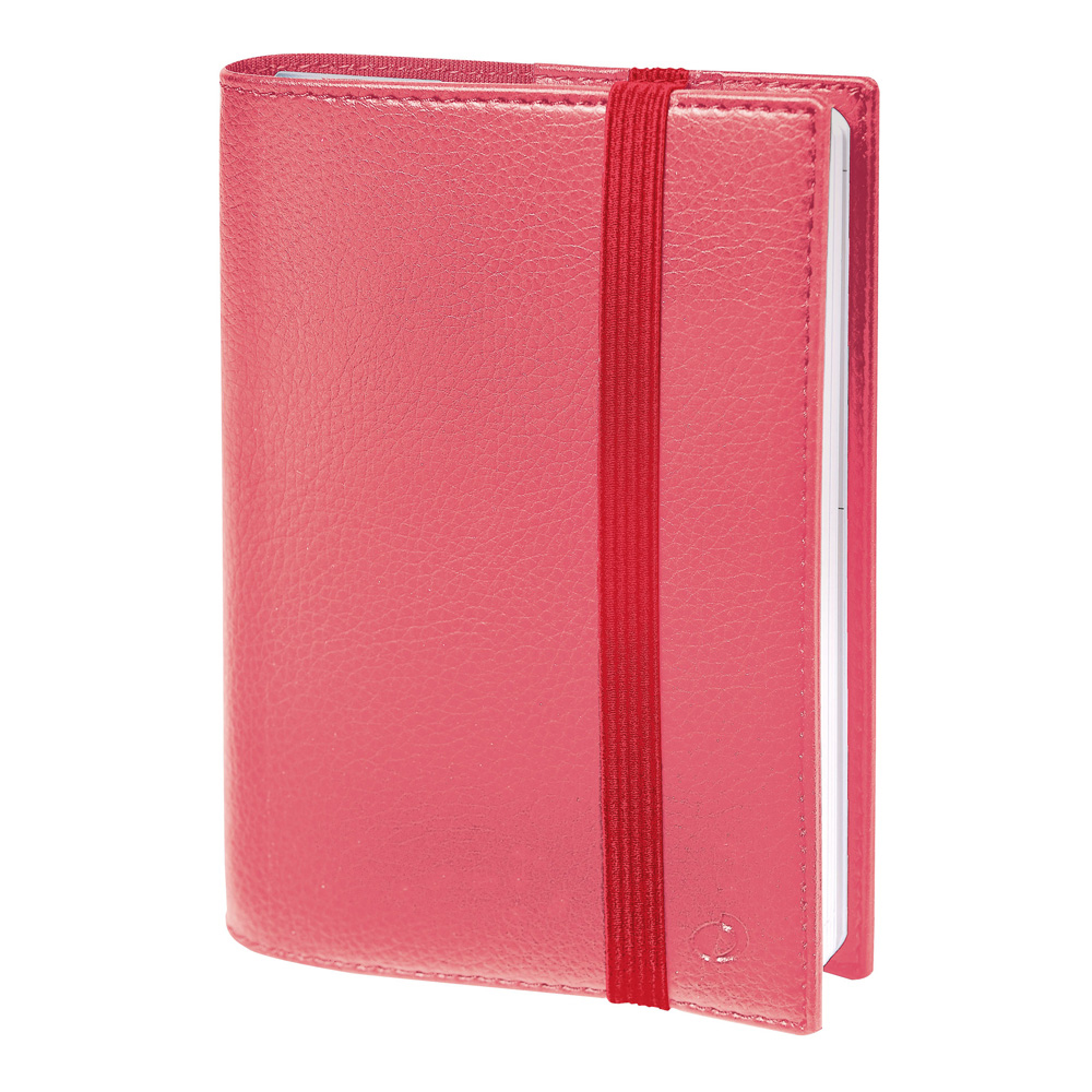 Kali Life Noted Rose Blush 2019 Planner