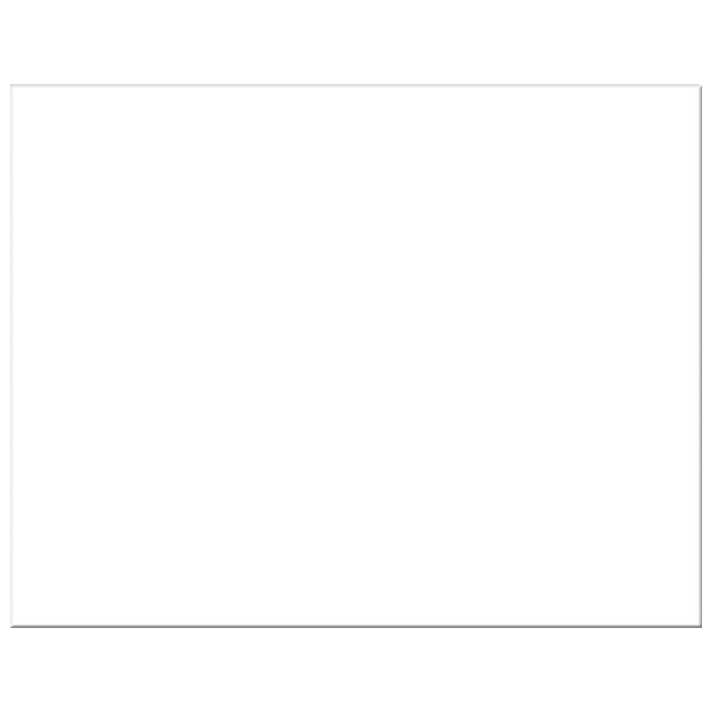 6-Ply Display Blank White 22X28 Pk/25