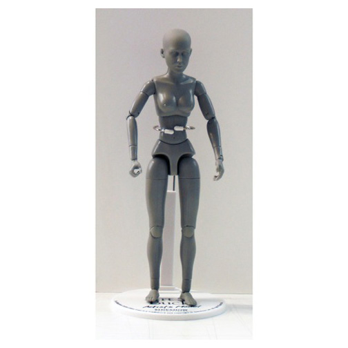 Art S. Buck Anatomical Manikin Female