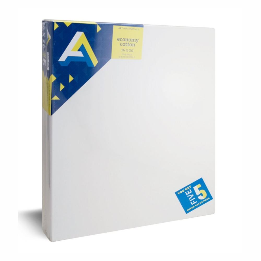 Aa Economy Super Value Canvas 5 Pack 16X20