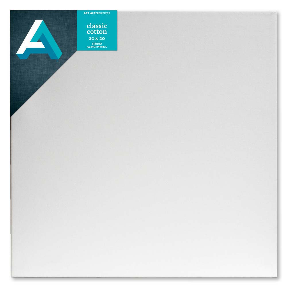 Aa Studio Stretched Canvas Case/10 20X20
