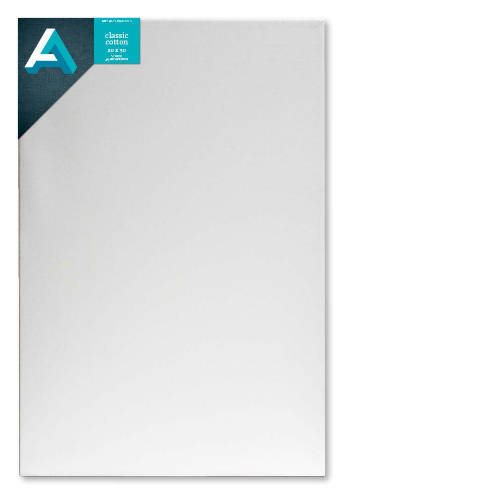 Aa Studio Stretched Canvas Case/10 20X30