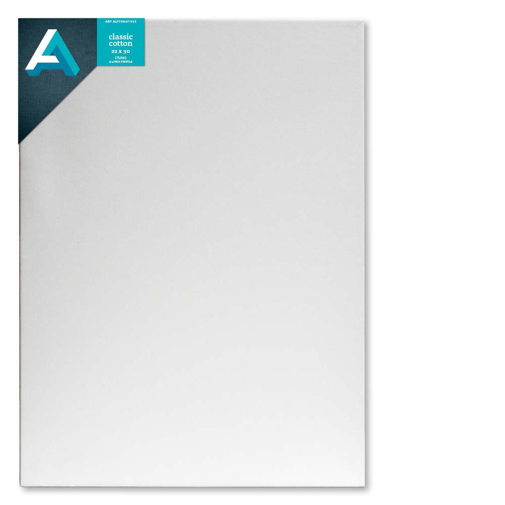 Aa Studio Stretched Canvas Case/10 22X30